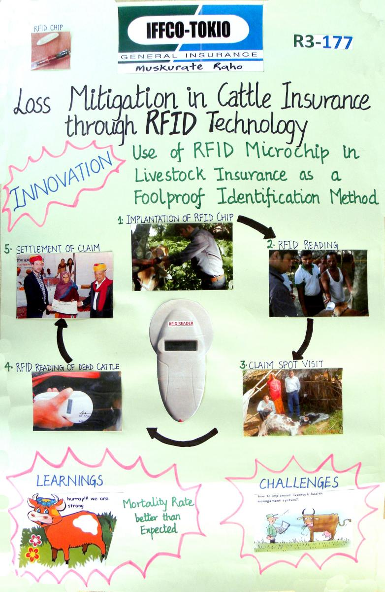 Cattle insurance through electronic identification chip technology
